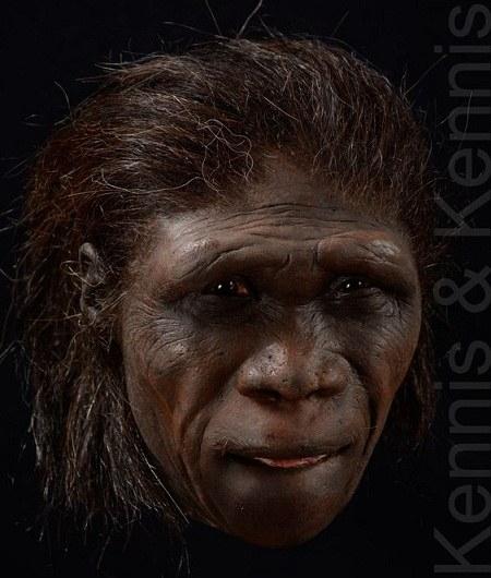 گالری عکس انسان های اولیه