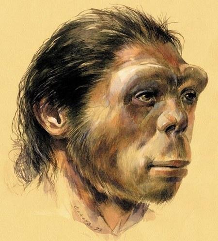 عکس صورت انسان اولیه