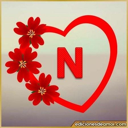 عکسهای مختلف و زیبای حرف انگلیسی N بزرگ