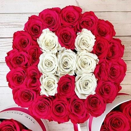 عکس حرف h با گل های زیبای محمدی
