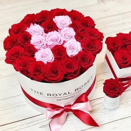 عکس حرف h با گل رز سرخ خوشگل