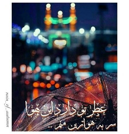 آلبوم عکس حرم امام حسین