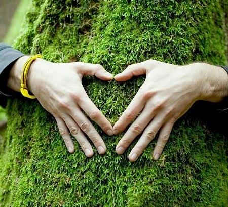 جملات قشنگ راجب طبیعت و عشق + عکس