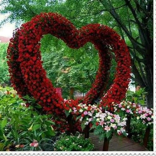 جملات زیبا درباره طبیعت و عشق