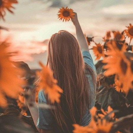عکس دختر زیبا گل آفتابگردان در دست