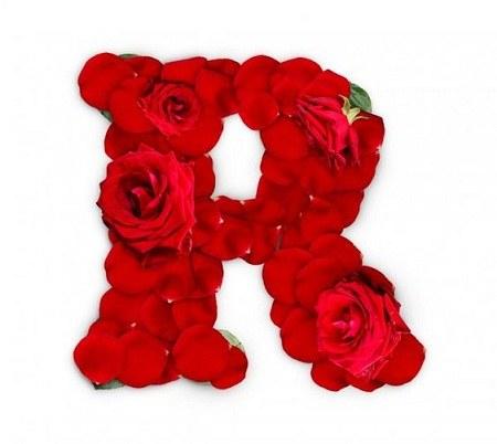 عکس حرف R گل قرمز