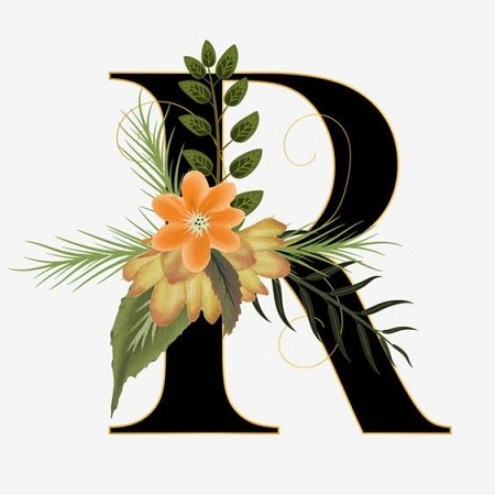 آلبوم عکس حرف R