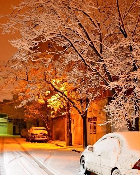 عکس شبهای برفی برای تصویر زمینه