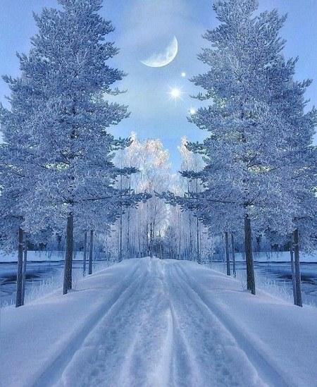 عکس شب برفی و ماه