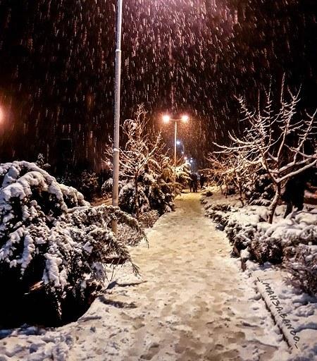 گالری عکس شبهای برفی