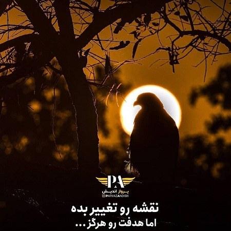 عکس نوشته عقاب مغرور