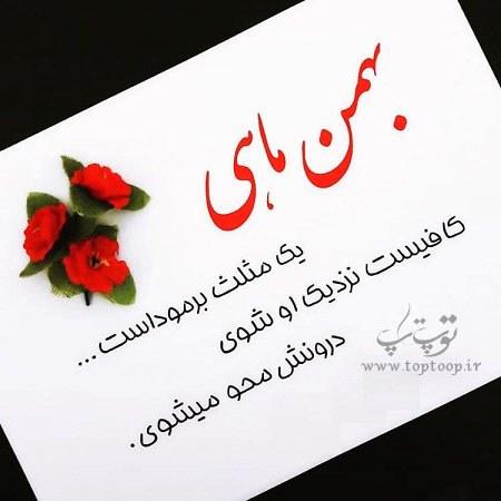 پروفایل صفات بهمن ماهی