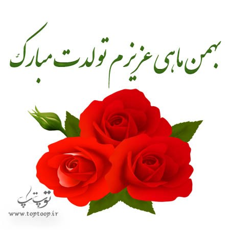 عکس و دلنوشته طولانی تبریک تولد همسر بهمن ماهی