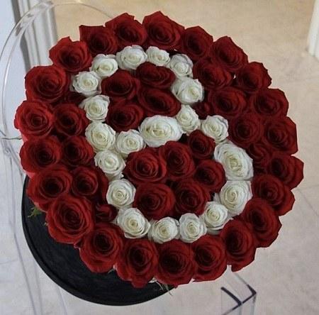 عکس حرف B با گل رز زیبا