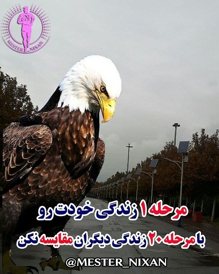 عکس نوشته های عقاب برای پروفایل