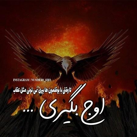 عکس پروفایل متن دار از عقاب