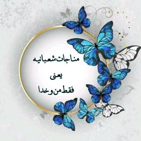 عکس نوشته مناجات شعبانیه