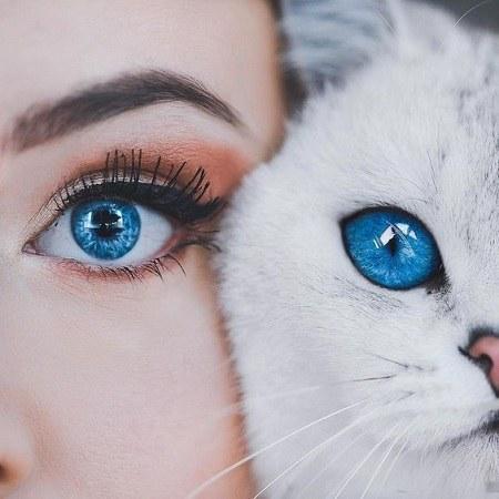 عکس دختر و گربه برای پروفایل دخترانه
