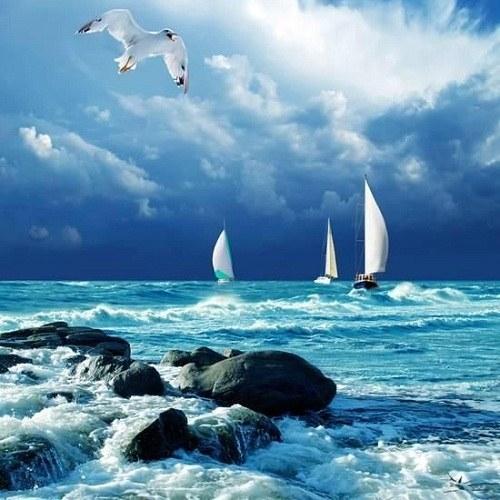 جملات کوتاه و زیبا درباره دریا + عکس