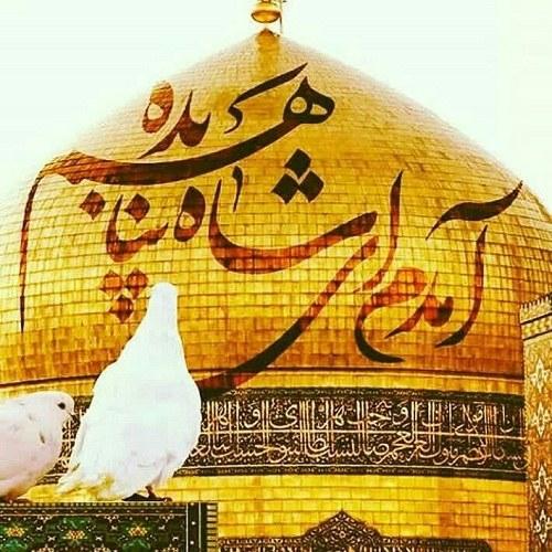 عکس نوشته امام رضا کمکم کن