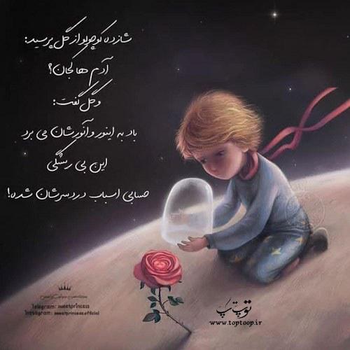 عکس نوشته شازده کوچولو و گل