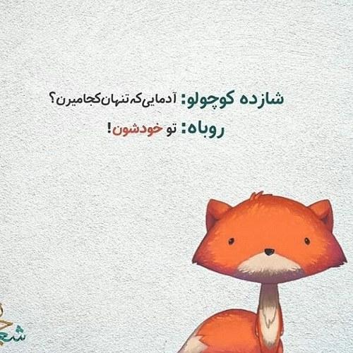 جملات غمگین شازده کوچولو و روباه