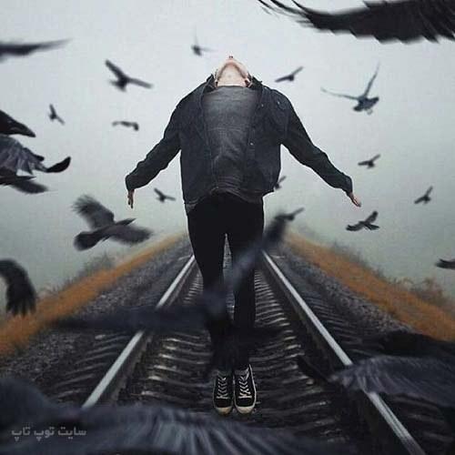 عکس گرافیکی پسرانه (پرنده ، سیاه سفید)