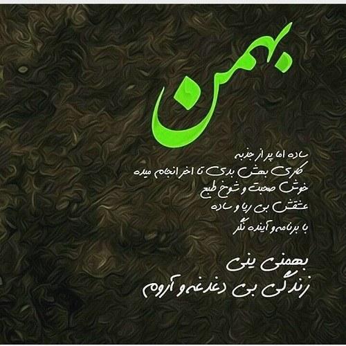 پروفایل توصیف بهمنی ها