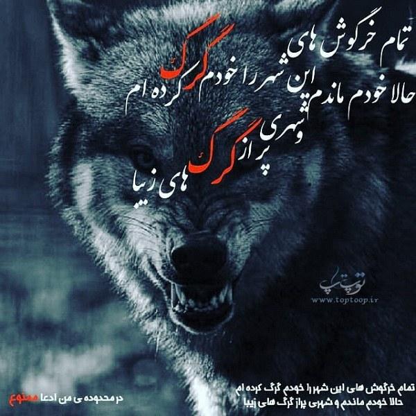 عکس نوشته خودم گرگم