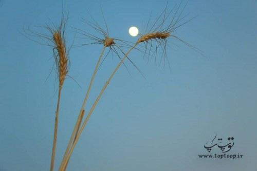 جملات زیبا و کوتاه در مورد ماه آسمان