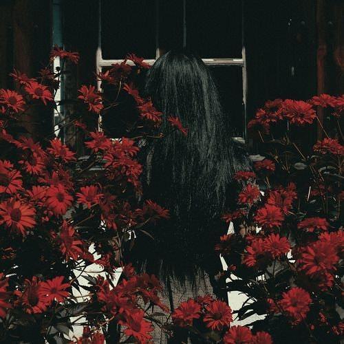 عکس های قشنگ از گل ها برای پروفایل