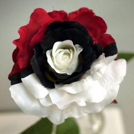 تصاویر گل های قشنگ برای پروفایل