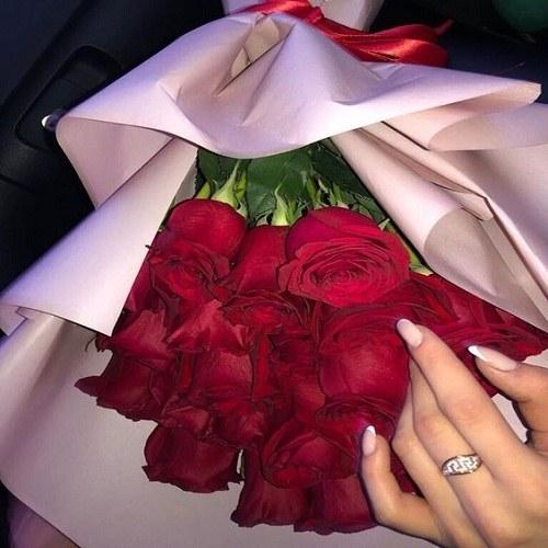 عکس گل ناز برای پروفایل