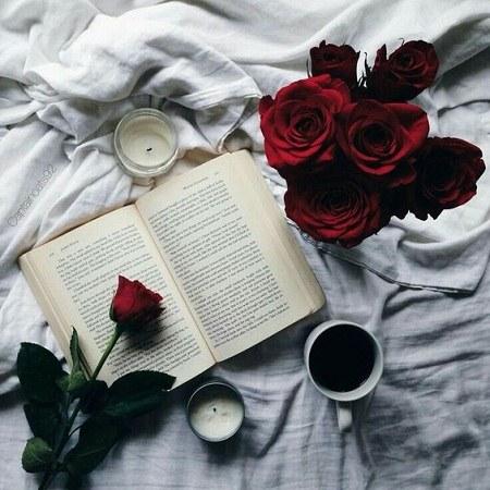 عکس گل و فنجان چای رمانتیک