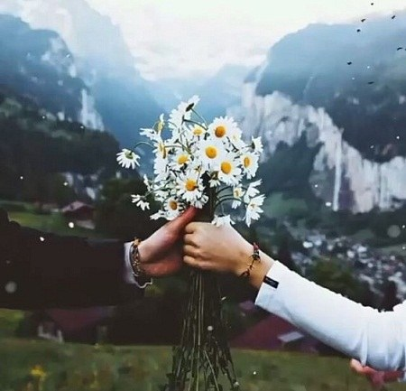 عکس پروفایل عاشقانه گل مریم دختر پسر