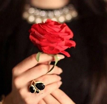 عکس گل زیبا در دست دختر